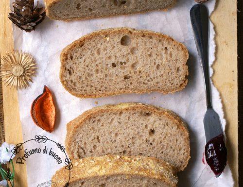 Ciabatte integrali al teff senza glutine