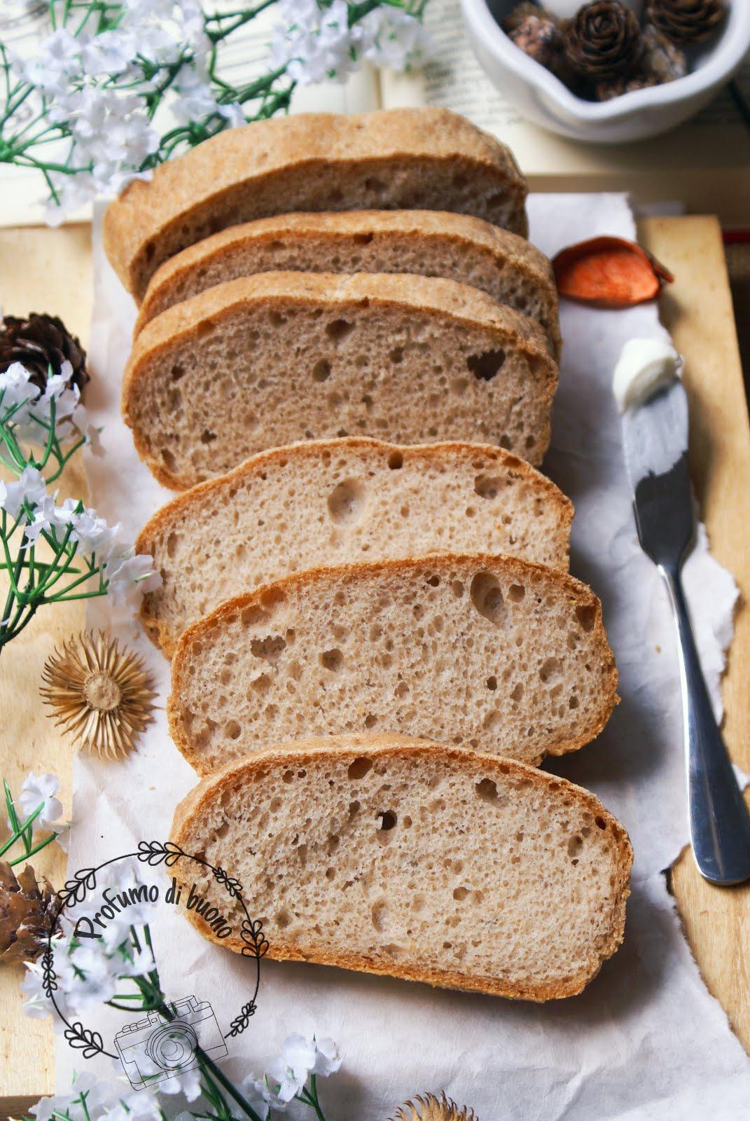 Pane integrale alla quinoa senza glutine
