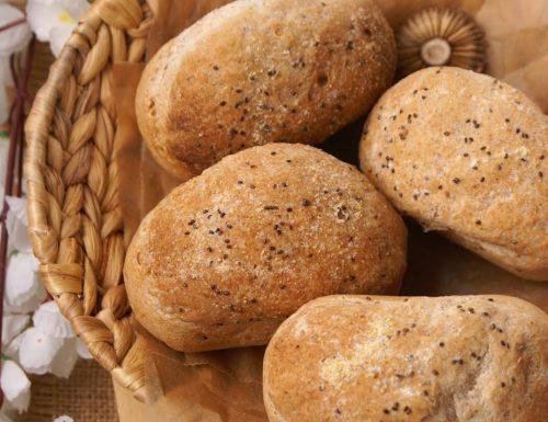 Panini semplici senza glutine nella zeroglu